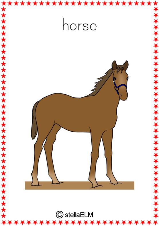 Pic Of Horse Dog Cat