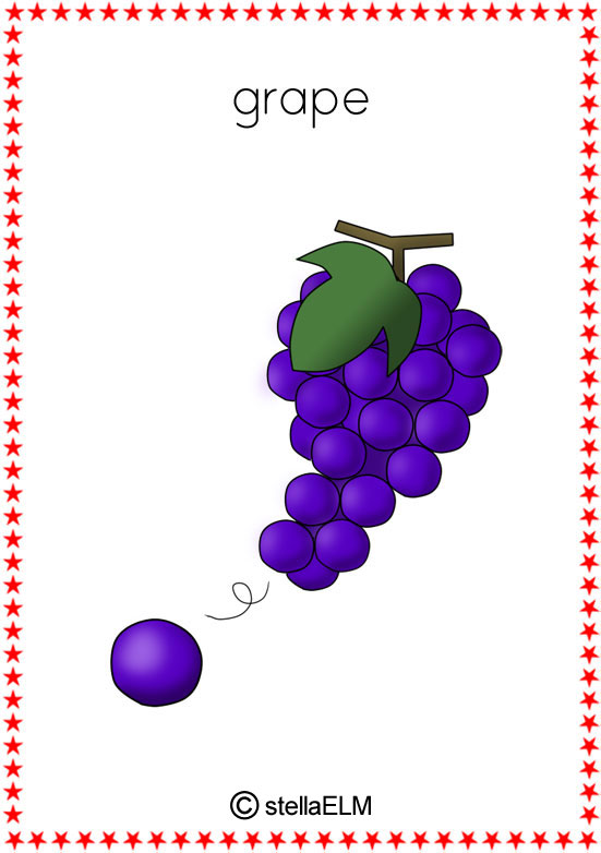 Original further Vegetable Flashcards E together with Image Width   Height   Version furthermore Grape in addition Homeostasis. on kindergarten worksheets 11